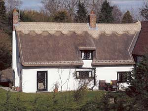 Thatched Re-ridge In Long Straw