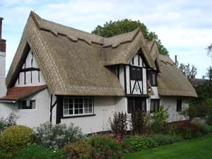Traditional Thatched Roof