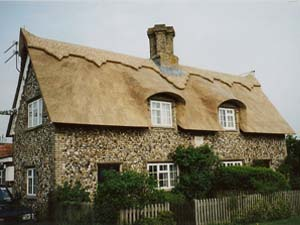 Cottage Thatched With Water Reed