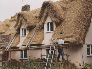 Thatching Eave