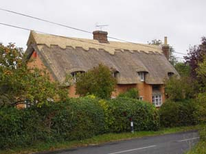 Re-ridging Old Thatch