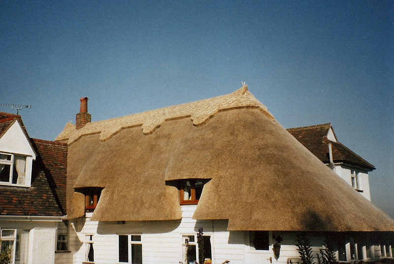 Wheat reed thatched roof